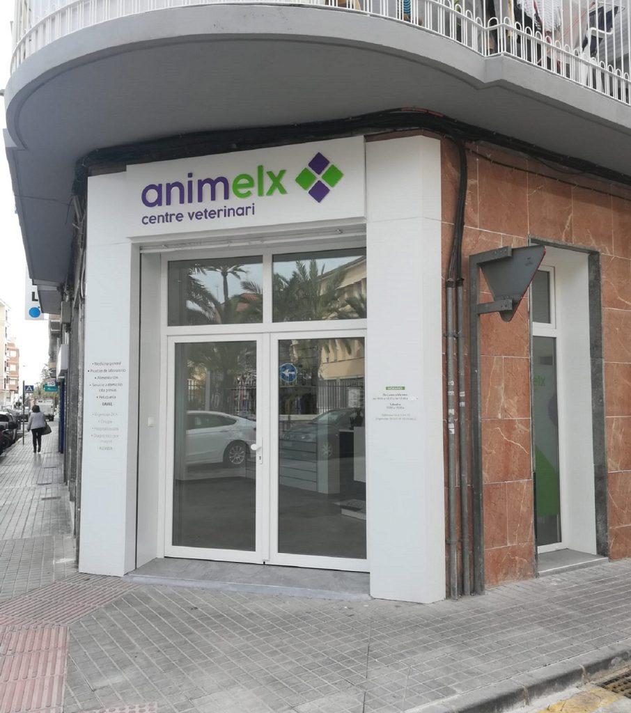 Animelx Raval centro veterinario Elche